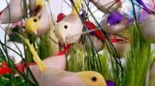 Antalya Çiçekçiler - 0538 9692901 Gülşen Çiçek Evi (3)