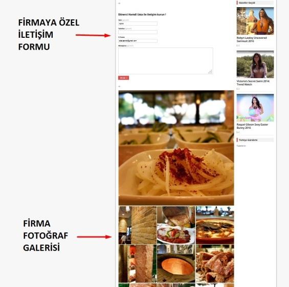 firma-sayfasi-2-1